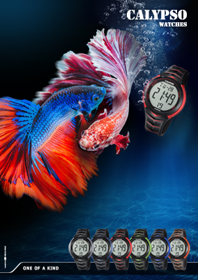 CALYPSO_FISH_k5730___284x402