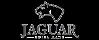 logos-marca-jaguar